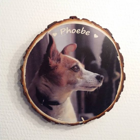 Boomschijf met huisdier foto - huisdier foto kado - kado - foto op hout - Foto op boomschijf- Persoonlijk kado - Uniek Fotokado